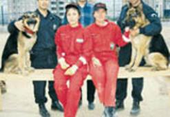 'Enkaz devralan' köpekler