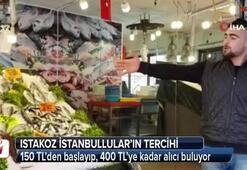 Istakoz İstanbulluların tercihi