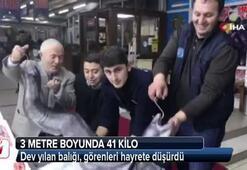 Marmara Denizinden canavar çıktı