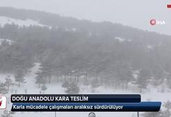 Doğu Anadolu kara teslim