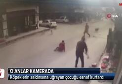 Köpeklerin saldırısına uğrayan çocuğu esnaf kurtardı