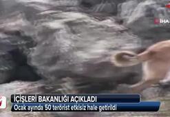 Ocak ayında 50 terörist etkisiz hale getirildi