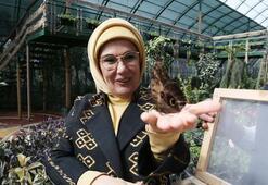 Emine Erdoğan Kelebek Vadisini açtı