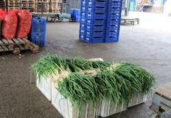 Halden çıkışı 15 liraya kadar alıcı bulan yeşil soğan yok satıyor
