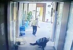 Son dakika... Çukurova Belediyesine kanlı baskın 2 ölü, 1 yaralı var