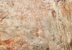En eski hayvan resmi Borneo Adasındaki bir mağarada bulundu