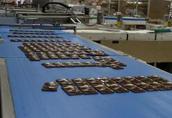 Kanadadan Diyarbakıra geldi, 4 kıtaya çikolata ihraç ediyor