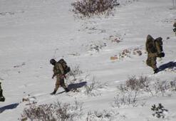 Son dakika: Karadenizde PKKnın kış üslenmesine darbe