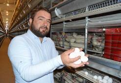 TKDK desteğiyle modernize ettiği çiftlikte ihracata başladı