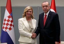 Cumhurbaşkanı Erdoğan, Kitaroviç ile görüştü