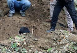 Taylandda İngiliz milyoner ve eşini öldürüp gömmüşler
