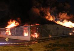 Aydında büyük yangın Saatler sonra kontrol altına alındı