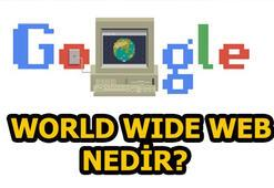 World Wide Web doodle oldu World Wide Web nedir