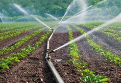 FAOdan toprak için veri tabanı çalışması