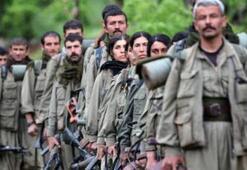 PKK şüphelisi, Yunanistana kaçarken yakalandı