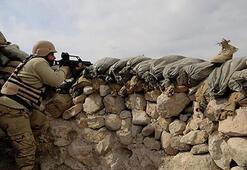 Irak ordusu Şengalde büyük operasyona hazırlanıyor
