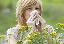 Bahar alerjisine iyi gelen 8 yiyecek