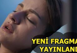 Sen Anlat Karadeniz 27. yeni bölüm fragmanı yayınlandı Yiğit kayboluyor