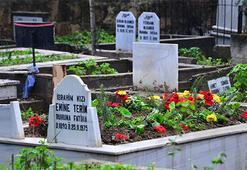 Talat Terimin mezarı sarı kırmızı...
