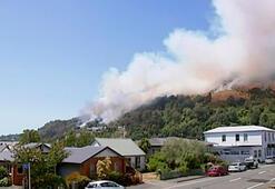 Orman yangını yüzlerce insanı evinden etti