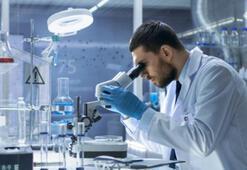Bilim insanları kansere neden olan gıdaları açıkladı