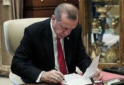 Cumhurbaşkanı Erdoğan imzaladı Yeni kurulan üniversitelere kadro