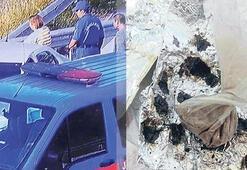 Aydın-İzmir otoloyu kenarında uyuşturucu partisi