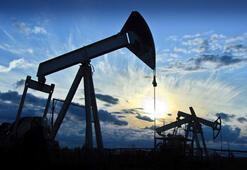 Petrolün varili 79,61 dolar