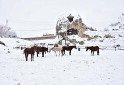 Beyaz Kapadokya ziyaretçileri büyülüyor