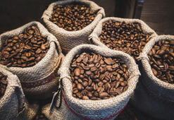 Dünyanın en iyi 6 kahve rotası