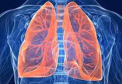 Tüberküloz nedir, bulaşıcı mıdır