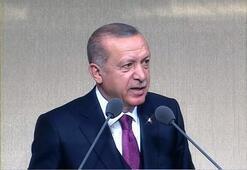 Erdoğan'dan AİHM'nin Demirtaş kararına tepki: Düpedüz terörist sevicilik