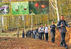 Doğa yürüyüşüyle huzuru yakalayın