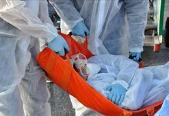 Ebola öldürmeye devam ediyor