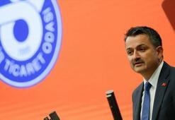 Bakan Pakdemirli: Türkiye balık ürünleri ihracatında 1 milyar doları geçti