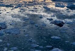 Korkunç gerçek ortaya çıktı 6 ton metan gazı...