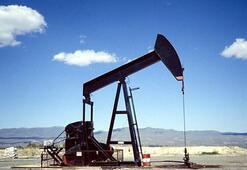 Petrol arama ruhsat başvurusu