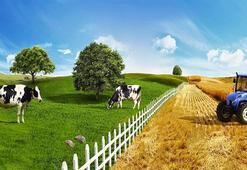 Tarım Krediden 100 üründe yüzde 10 indirim