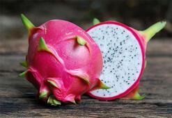 Ejder meyvesi nedir Ejder meyvesinin faydaları nelerdir