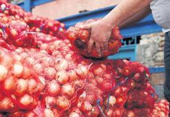 Soğan fiyatına 'ithal' çözüm