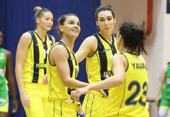 Fenerbahçe - İstanbul Üniversitesi: 81-46