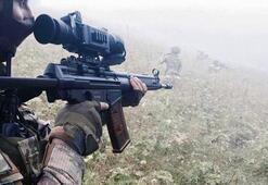 Deşifre oldular PKK, 3 teröristi Karadenize göndermiş...