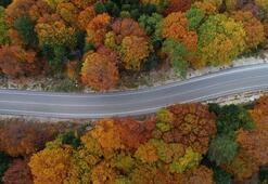 Uludağdan muhteşem sonbahar manzaraları
