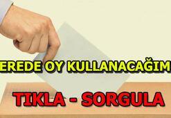 Yerel seçimlerde nerede oy kullanacağım 31 Mart seçimi YSK seçmen sorgulama