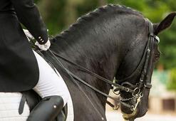 Hadi ipucu sorusu: Atlarla arası çok iyi olup birçok oyuncuya at binme dersi veren ünlü oyuncu kimdir