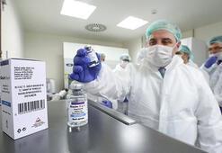 Kanser tedavisi için yerli ilaç çalışmaları ilk kez görüntülendi