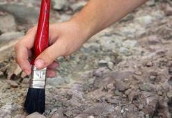 Arjantinde 700 bin yıllık tembel hayvan fosili bulundu