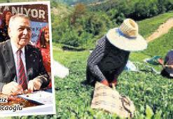 Kırsal kalkınmada Karadeniz'e destek