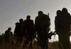 Şırnakta PKKya ağır darbe Gabar sorumlusu sağ olarak yakalandı