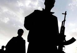 Şırnakta PKKlı 2 terörist etkisiz hale getirildi
